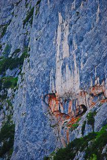 'Felswand... 1' von loewenherz-artwork