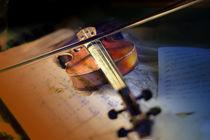 Violine by Christiane Calmbacher
