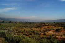 Steppenlandschaft in Utah von Frank  Kimpfel