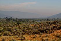 Steppenlandschaft in Utah II von Frank  Kimpfel