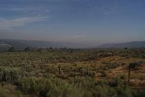 Wüstenlandschaft in Utah von Frank  Kimpfel