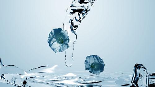 Blume-hellblau