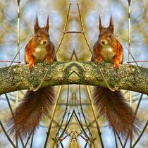Eichhörnchen Zwillinge 2 von kattobello