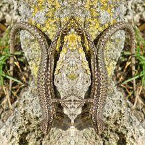 Eidechsen Zwillinge von kattobello