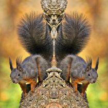 Rot braune Eichhörnchen Zwillinge von kattobello