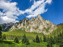 Grey Rock   (Piatra Sura)  by Enache Armand Iustinian
