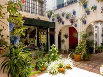 Courtyard Shoping by David Bishop