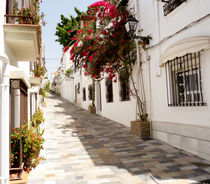 Marbella Street Old Town by David Bishop