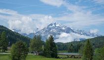 Wald und Berge by Stephan Gehrlein
