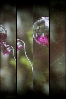 Glück und Glas by Petra Dreiling-Schewe
