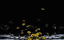 Blumenmeer von Stefanie Keller
