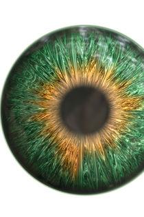 Green Iris von oliverp-art