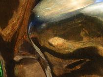 reflektion in art von k-h.foerster _______                            port fO= lio