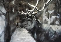 Hirsch im Schnee, deer  von Thomas Neumann