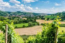 Disibodenberg-Blick auf Odernheim 30 by Erhard Hess