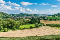 Disibodenberg-Blick auf Odernheim 36 von Erhard Hess