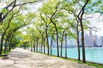 Milton Lee Olive Park by Anna Zamorska