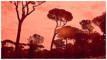 Sunrise Roma von Caro Rhombus van Ruit