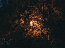 Luminous sphere von Andrei Grigorev