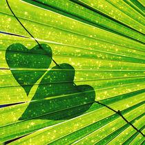 Lush Forest Hearts von Karen Black