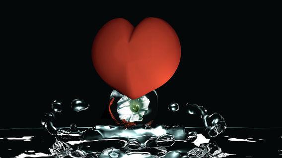 Herzblume