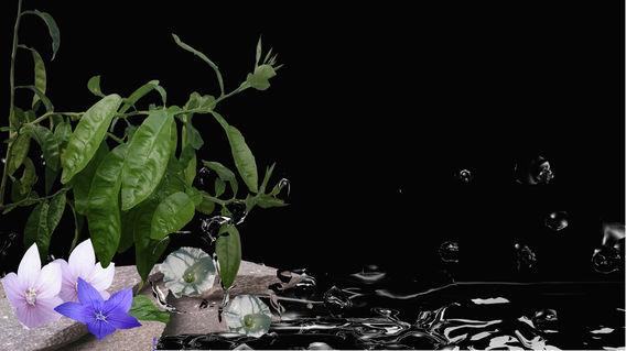 Steinundwasser
