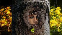 weinender Baum von Stefanie Keller