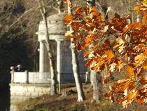 Herbst von maja-310