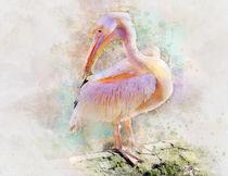 pink Pelican by Elena Oglezneva