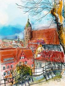 Pirna, Blick zur Marienkirche von Hartmut Buse