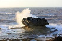 Rock in the waves von Martina  Gsöls