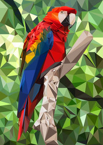 Ara Parrot Low Poly von William Rossin