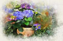 Blue Hydrangea by Elena Oglezneva