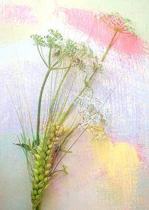 Zarte Sommerfarben von Renate Grobelny