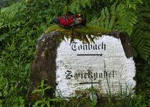 Ein Wanderschuh bei Tonbach by ysanne