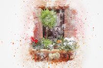 Floral Window von past-presence-art