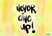 Never Give Up! von Vincent J. Newman