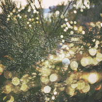 Rainshine von Karen Black
