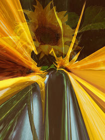 Sonnenblume abstrakt by Chris Berger