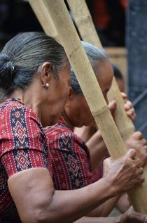 At a funeral ceremony in Tana Toraja, Sulawesi by firefly