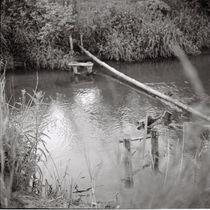 Quiet river by Kiryl Kaveryn