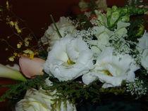 Brazilian Flowers 001 by ALOIZIO NASCIMENTO
