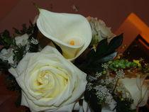 Brazilian Flowers 002 by ALOIZIO NASCIMENTO