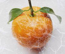 Mandarine verfremdet von Renate Grobelny