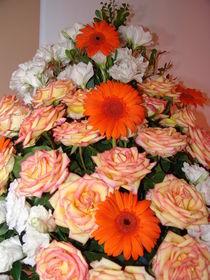Brazilian Flowers 009 by ALOIZIO NASCIMENTO