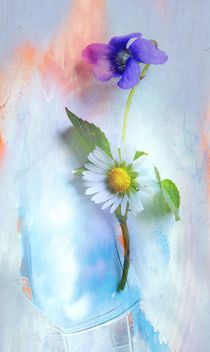 Veilchen trifft Gänseblümchen von Renate Grobelny