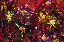 Colorful Windmills von Jim Corwin