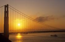 Golden Gate Bridge  by Jim Corwin