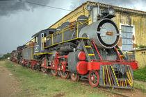 Trinidad Steam  by Rob Hawkins