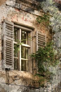 Das Fenster Zyklus I von Ingo Mai